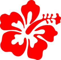 cropped-red-hibiscus-md1.png