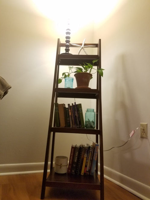 Spunktified - book shelf