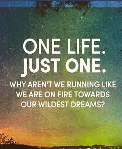 one life - on fire