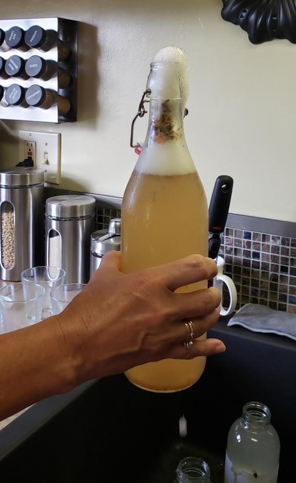ABCs of Kombucha - Flavored Bottle